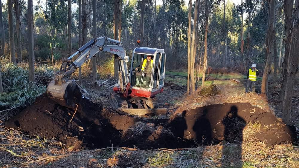 Empresas de trabajos forestales en Galicia